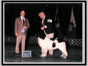 Champion Waterlords Chf Silver Cloud, OFA